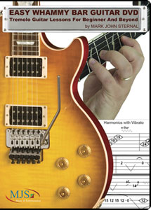Easy Whammy Bar Guitar