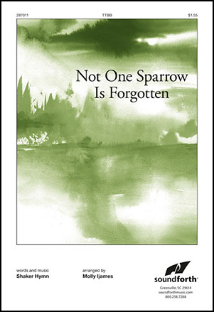 Not One Sparrow Is Forgotten