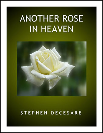 Another Rose in Heaven
