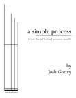 A Simple Process