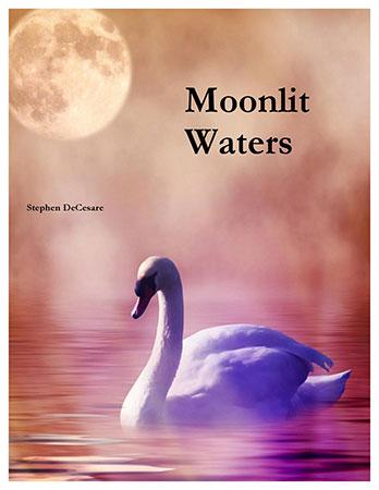 Moonlit Waters