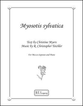 Mysotis sylvatica