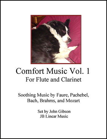 Comfort Music for Flute and Clarinet