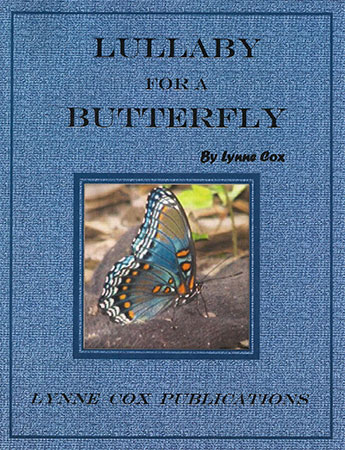 Lullaby for a Butterfly