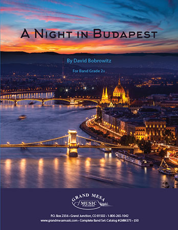 A Night in Budapest