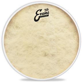 Calftone Tom Drumhead