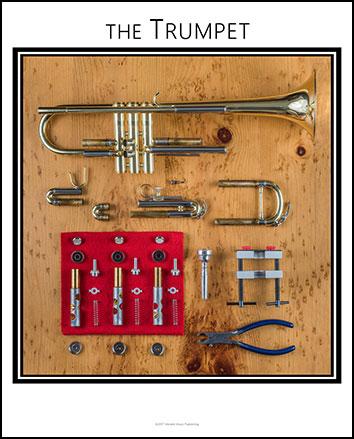 Trumpet  Anatomy Chart