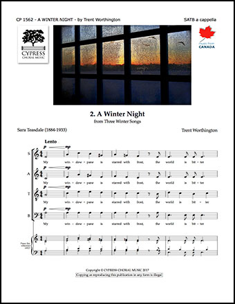 A Winter Night