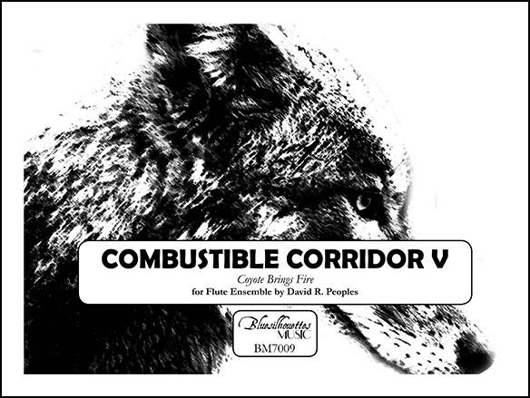 Combustible Corridor V