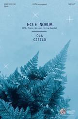 Ecce Novum