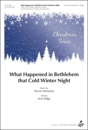 What Happened in Bethlehem That Cold Winter Night
