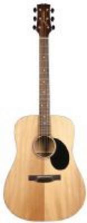 Jasmine Dreadnought Guitar