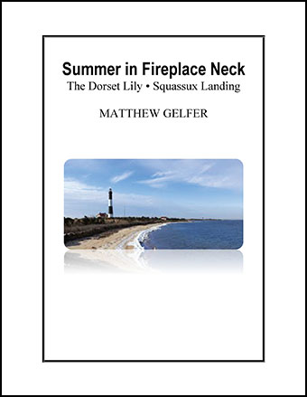 Summer in Fireplace Neck