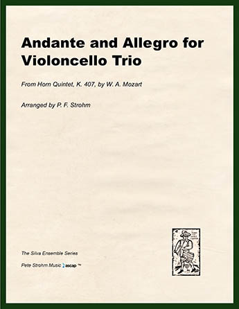 Andante and Allegro for Violoncello Trio