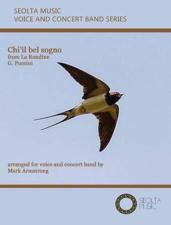 Ch'il bel sogno (from 'La Rondine')
