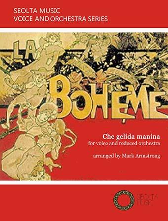 Che gelida manina (from 'La Bohème')