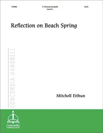 Reflection on Beach Spring