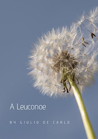 A Leuconoe
