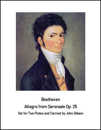 Beethoven Allegro from Serenade op.25