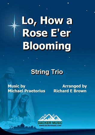 Lo, How a Rose E're Blooming