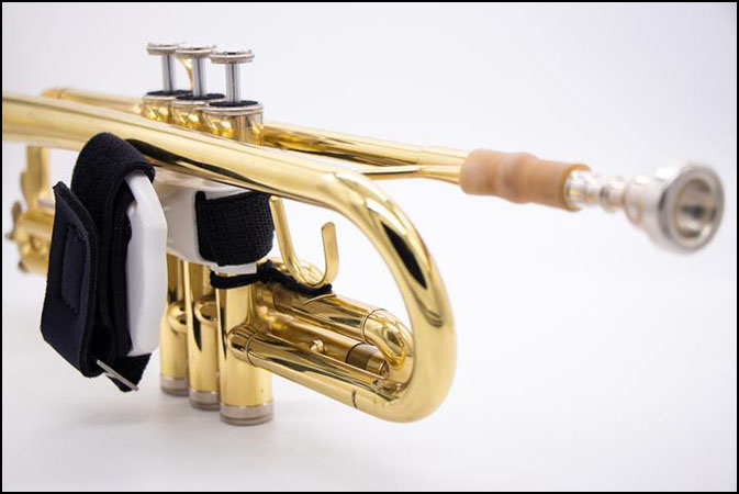 Rota Trumpet Spinner