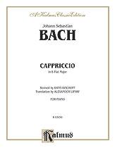 Capriccio on Departure of Brother