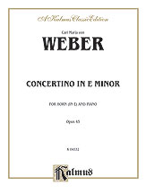 Concertino in E Minor Op. 45