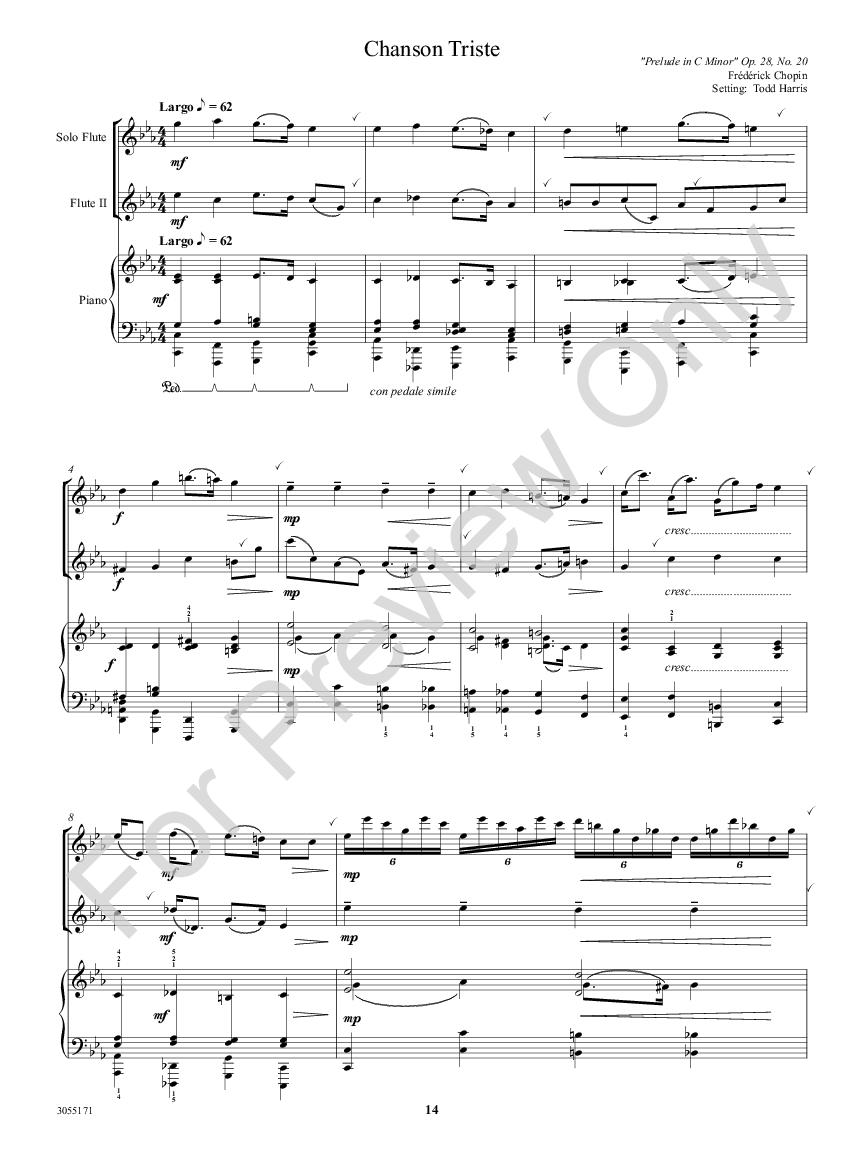 The Lyric Flutist Thumbnail