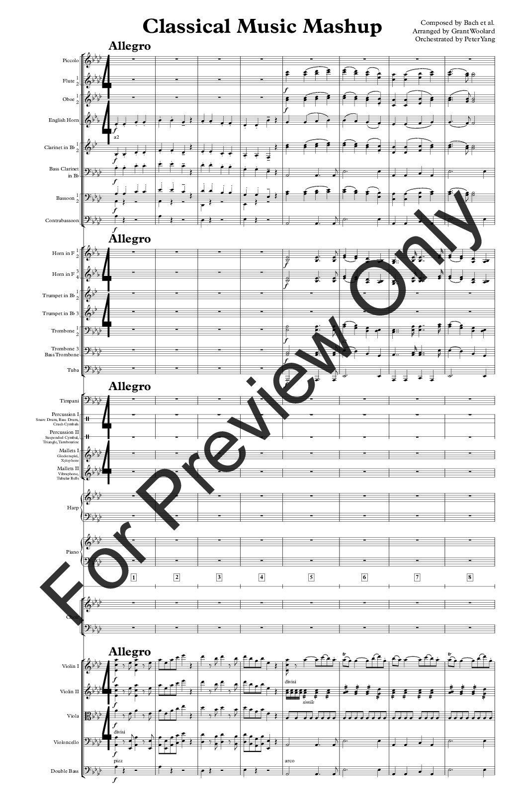 Classical Music Mashup by Grant Woolard / Peter Y | J W
